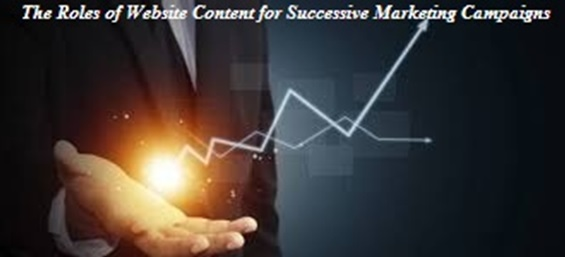 The Roles of Website Content for Successive Marketing Campaigns